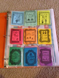 Prize Binder instead of a treasure box (or in my class entire treasure cupboard!)  LOVE LOVE LOVE this idea!