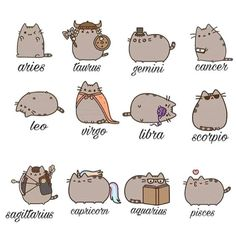Cat Astrology: Traits by Zodiac Sign – Astrologie Zodiac Signs Animals, Zodiac Signs Chart, Zodiac Sign Traits, Zodiac Signs Astrology, Zodiac Star Signs, Aquarius Zodiac, My Zodiac Sign, Astrology Houses, Chinese Zodiac Signs