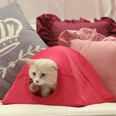 Super Cute T-Shirt Cat Tent Video Tutorial Diy Cat Tent, Cat House Diy, Diy Dog Bed, Yorkie Dogs, Cat Room, Dog Pattern, Animal Projects, Diy Stuffed Animals, Cats And Kittens