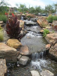 Backyard Waterfall pond! I wish we had one in my backyard somewhere...