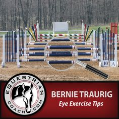 In this video topic Bernie Traurig demonstrates exercises you can incorporate into your flatwork everyday that will work your eye without overworking your horse! View on EquestrianCoach.com at: http://www.equestriancoach.com/content/eye-exercise-tips