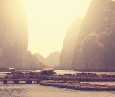 Why travel to #HalongBay? The limestone karsts are majestic & create a baffling realm of natural beauty. #Vietman http://nomadisbeautiful.com/travel-blogs/how-to-visit-halong-bay-from-hanoi/