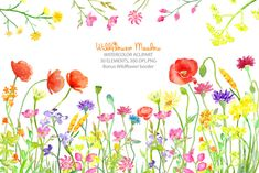 Watercolor clipart Wild flower meadow border by CornerCroft
