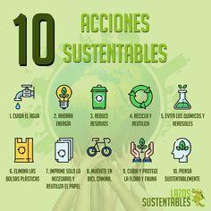 ¿Quieres proteger el medio ambiente?🤔🌱🌎 con estas simples 10 acciones podrás hacerlo!🍃🌳💚 #medioambiente #sustentabilidad #mundo #planet #bike #bicicleta #lazos #sustentable #reciclar #reutilizar #reducir #bolsas #energia