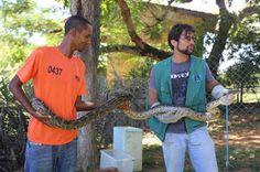 """""""O Grito do Bicho"""": Detentos aprendem a manejar animais silvestres em ..."""