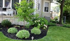 pictures of flower beds in front of house   Can you see the pink hydrangea on the side of the porch?