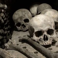 Prague Prague, Skull, Travel, Art, Art Background, Viajes, Kunst, Destinations, Traveling