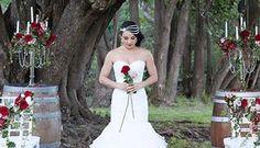 Marquee Wedding Reception Venue GoldCoast- Oreillys Vineyard!