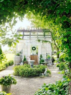 What a beautiful little garden. I would love to sit back and relax in this magical spot.