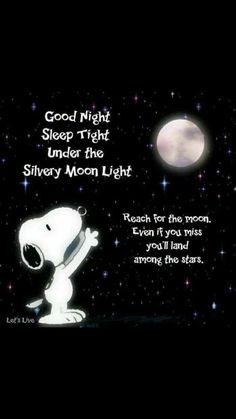 I haven't seen this one before 😲 frases dulces, frases de snoopy, Charlie Brown Peanuts, Charlie Brown And Snoopy, Charlie Brown Quotes, Peanuts Cartoon, Peanuts Snoopy, Snoopy Cartoon, Good Night Quotes, Night Qoutes, Good Night Sleep Tight