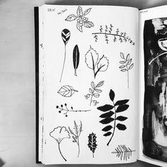 37/365 leaves and things #sketch #sketchaday by #twoifbyseastudios #1hoursketch #365sketchbook