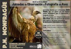 Esta Primavera volvemos a MONGFRAGÜE!!! Durante los días 21 y 22 de Mayo tenemos organizadas unas Jornadas de Observación y Fotografía de Aves. Dichas Jornadas estarán guiadas por nuestro Naturalis…
