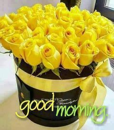 Good Morning sweetheart I see you are all ready busy be careful I still love you just so you know miss you so much . Good Morning Images Flowers, Latest Good Morning Images, Good Morning Picture, Good Morning Good Night, Morning Pictures, Good Afternoon, Morning Blessings, Good Morning Wishes, Monday Blessings