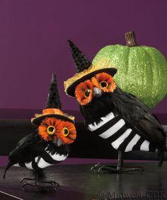 spooky owls