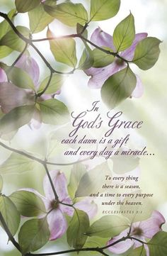 In God's Grace... There is an appointed time for everything. And there is a time for every event under heaven- Ecclesiastes 3:1