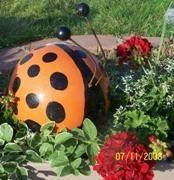 Bowling Ball Ladybugs And Bees Amy Maxwell Ladybug Yard Decorations