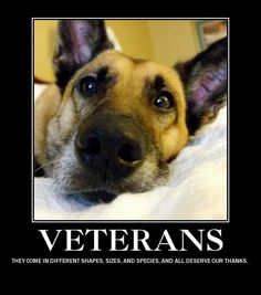 Military Working Dogs, where would we be without them. God bless our Vets, our Troops and our MWDs ~@guntotingkafir