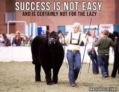 Success Is Not Easy And Is Certainly Not For The Lazy - Ranch House Designs Livestock Motivation Livestock Judging, Livestock Farming, Showing Livestock, Showing Cattle, Fair Quotes, Cow Quotes, Animal Quotes, Crush Quotes, Country Girl Life