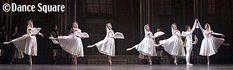 25.1.2014 Swan Lake Tokyo City Ballet act.3