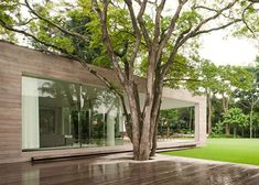 Sometimes it's worthwhile to construct a deck around a noteworthy tree. In an instant, the landscape is anchored. This is Casa Grecia by Isay Weinfeld