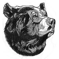 Image result for bear tattoo sketch