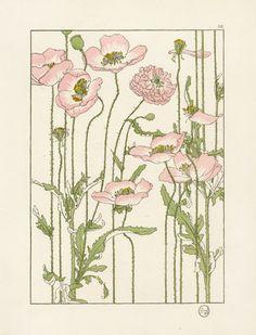 Art that might be part of my sleeve work. Veeery excited. Foord Pochoir Flower Studies 1901