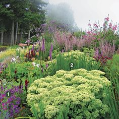 Garden by the sea. Plant id's and combinations. This garden offers seasonal color, and varieties of pinks and purples for cohesion that last all year round.