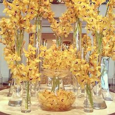 Our #BWflowers are breathtaking today... Don't you agree?