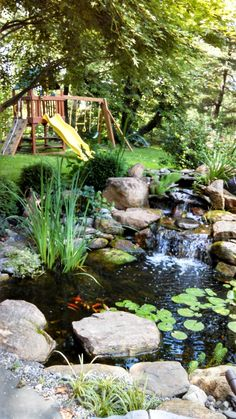 You can have one too !  In your very own backyard !  Build it !!  Use Pond Boss Water Gardening products.  www.thepondboss.net