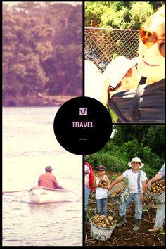 2 EXPERIENCIAS DE ÉXITO EN LA AGRICULTURA FAMILIAR INDIGENA Y DE MUJERES RURALES Costa, Movies, Movie Posters, Travel, Agriculture, Tourism, Viajes, Women, Films