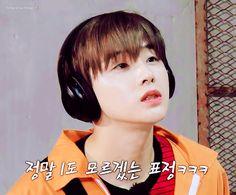 #진환 #JINHWAN Yg Ikon, Ikon Kpop, Bobby, Bts You Never Walk Alone, Kim Jinhwan, Fandom, Funny Kpop Memes, My Wife Is, Korean Music