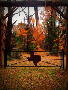 Fall in Mt. Vernon, Texas