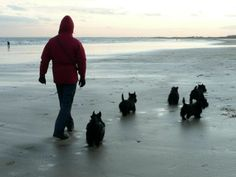 what's better than a walk on the beach with five best friends!