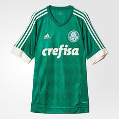 f293bb8290 31 melhores imagens de Palmeiras