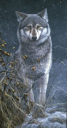 by Jeremy Paul Breathtaking painting! Beautiful Wolves, Animals Beautiful, Cute Animals, Wolf Painting, Feather Painting, Fantasy, Wolf Drawings, Wolf Love, Wolf Pictures
