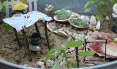 beach fairy garden pictures | the clean plate club: a beach fairy garden!