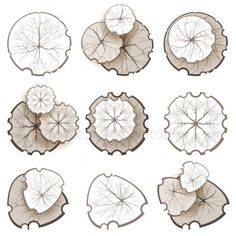 Trees - Top View by mart_m Trees top view. Easy to use in your landscape design projects! Eps 10 and Ai CS 3 included. Landscape Sketch, Landscape Drawings, Landscape Plans, Landscape Design, Vector Trees, Vector Flowers, Tree Plan Png, Photoshop Elementos, Architectural Trees