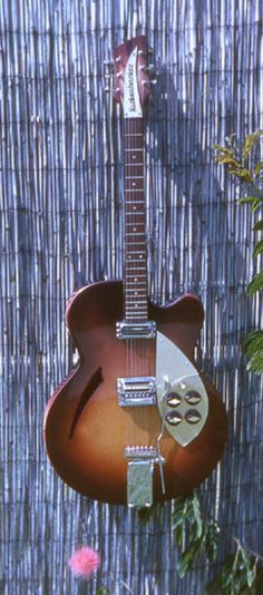 Rickenbacker 335F