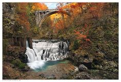 Vintgar Gorge III http://golfdriverreviews.mobi/traffic8417/ Robert Garrigus (born November 11, 1977) is an American professional golfer who is currently a member of the PGA Tour.