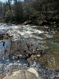 Cahaba River Cahaba River, My Town, City Photo, Water, Outdoor, Gripe Water, Outdoors, Outdoor Games, The Great Outdoors