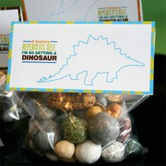 Wants and Wishes: Party planning: Dinosaur Party