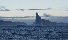 El Krill Superba es capturado en el Antártico