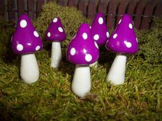 Etsy.com  Free shipping Fairy Garden mushrooms set of 5 terrarium by fairysmallthings, $7.00