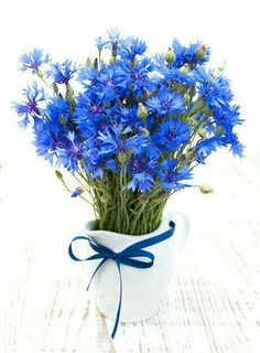 Gardening and Floral Design Tips from Jane Wrigglesworth Blue Flowers, Wild Flowers, Beautiful Flowers, Ikebana, My Flower, Flower Power, Blue Flower Arrangements, Deco Nature, Primroses