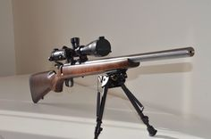 CZ Picture Gallery - Page 168 - RimfireCentral.com Forums