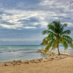 Plan your own relaxing trip with a look at @HealthyHappier's 4 days in paradise at Half Moon Resort,Jamaica