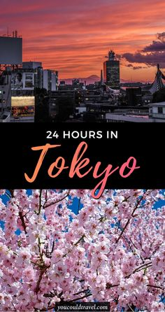 1 day in Tokyo (the essential must see)