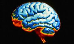 How healthy is YOUR brain? Take this 'mind MOT' to find out...