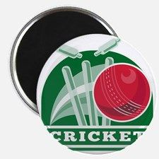 """vector illustration of a cricket ball hitting bowling over wicket with words """"cricket"""" - stock vector Cricket World Cup, Bowling, Retro Illustration, Magnets, Sports, Design, Hs Sports, Sport, Retro"""