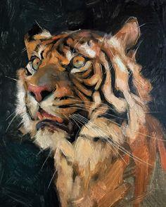 Animal Sketches, Art Drawings Sketches, Animal Drawings, Art Shed, Tiger Illustration, Big Cats Art, Tiger Art, Classical Art, 2d Art